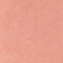 8321 - Nectarine