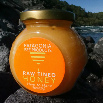 A Celebration of Honey with Patagonia Bee