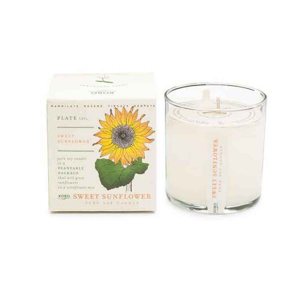 KOBO Sweet Sunflower Seed Candle