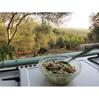 Cannellini Summer Bean Salad
