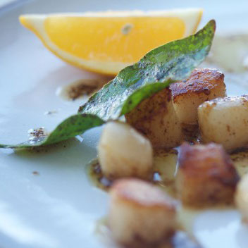 Seared Scallops with Bay Leaf Brown Butter