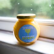 Chilean Rainforest Honey