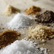 Salt Sampler Lifestyle