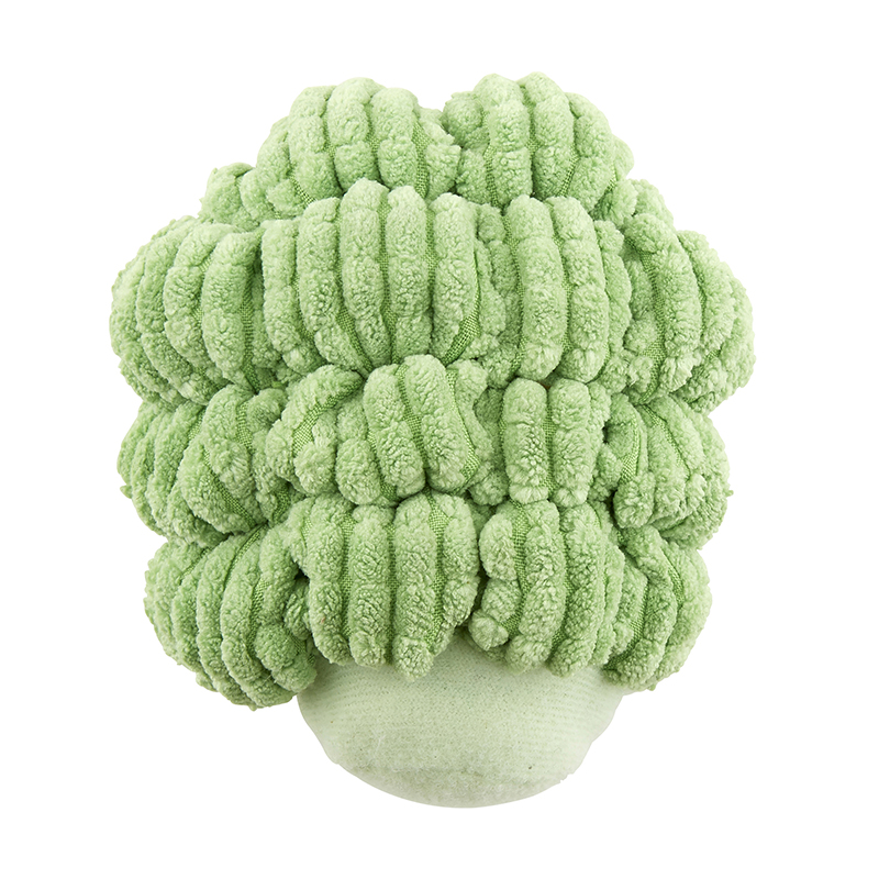 Vegetable Rattle - Broccoli