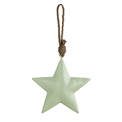 Enamel - Mint Star