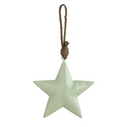 Enamel - Mint Star