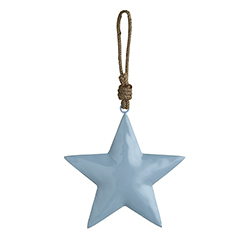 Enamel- Blue Star