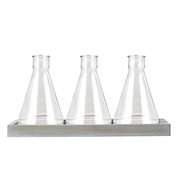 Glass Beaker Vase - Trio Set