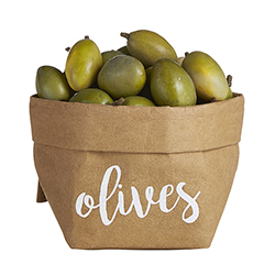 Washable Paper Holder - Small - Olives