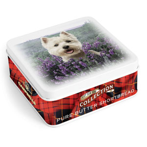 Westie in Heather Square Shortbread Tin from Campbells.