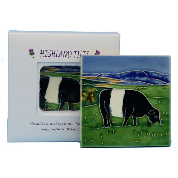 Belted Galloway Cow 4x4 inch ceramic tile
