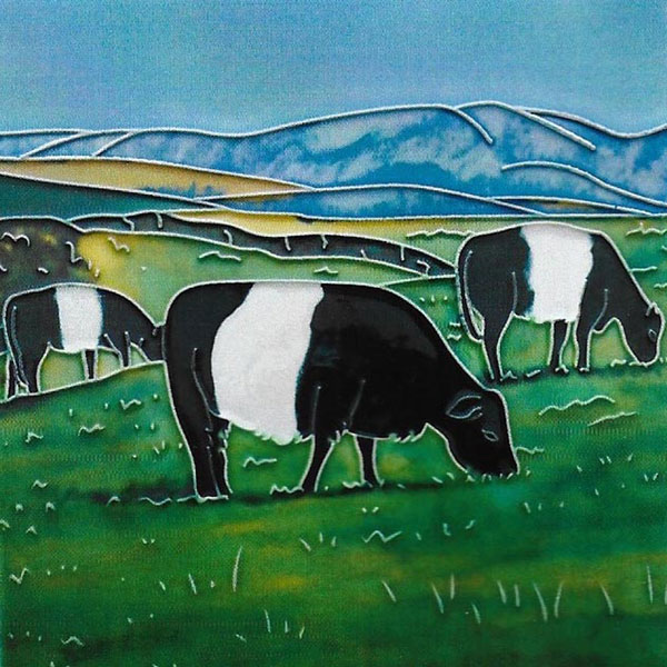 Belted Galloway Cow 8 by 8 inch creramic tile