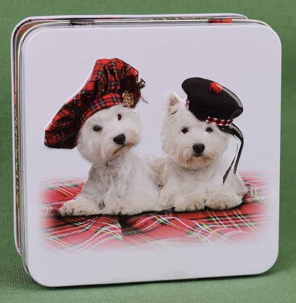 Westies with Tams Shortbread Tin from Campbells