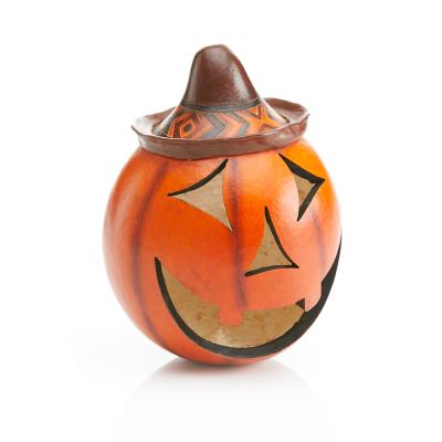 Pumpkin Gourd Jack-o'-Lantern