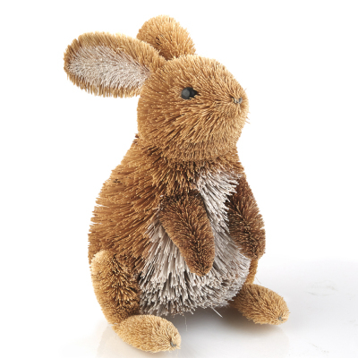 Curious Buri Bunny