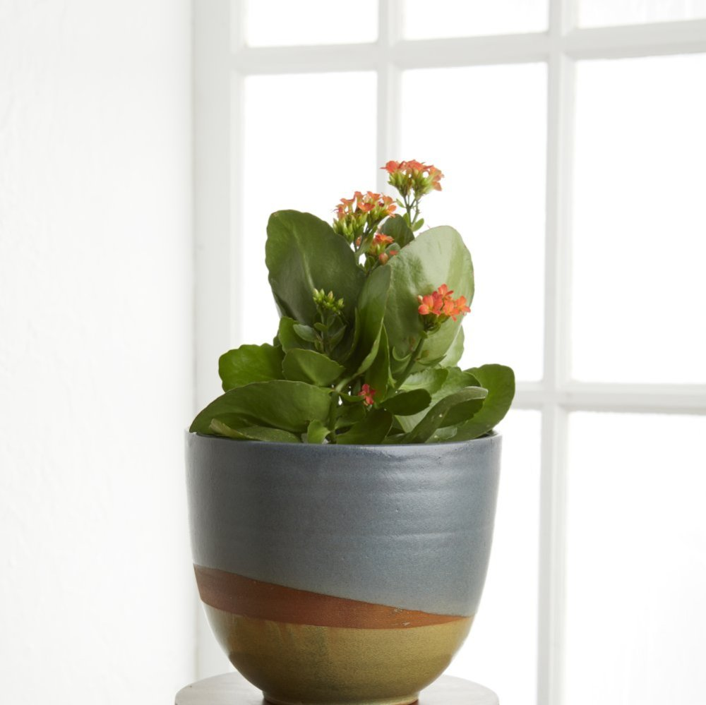 Landscape Ceramic Planter
