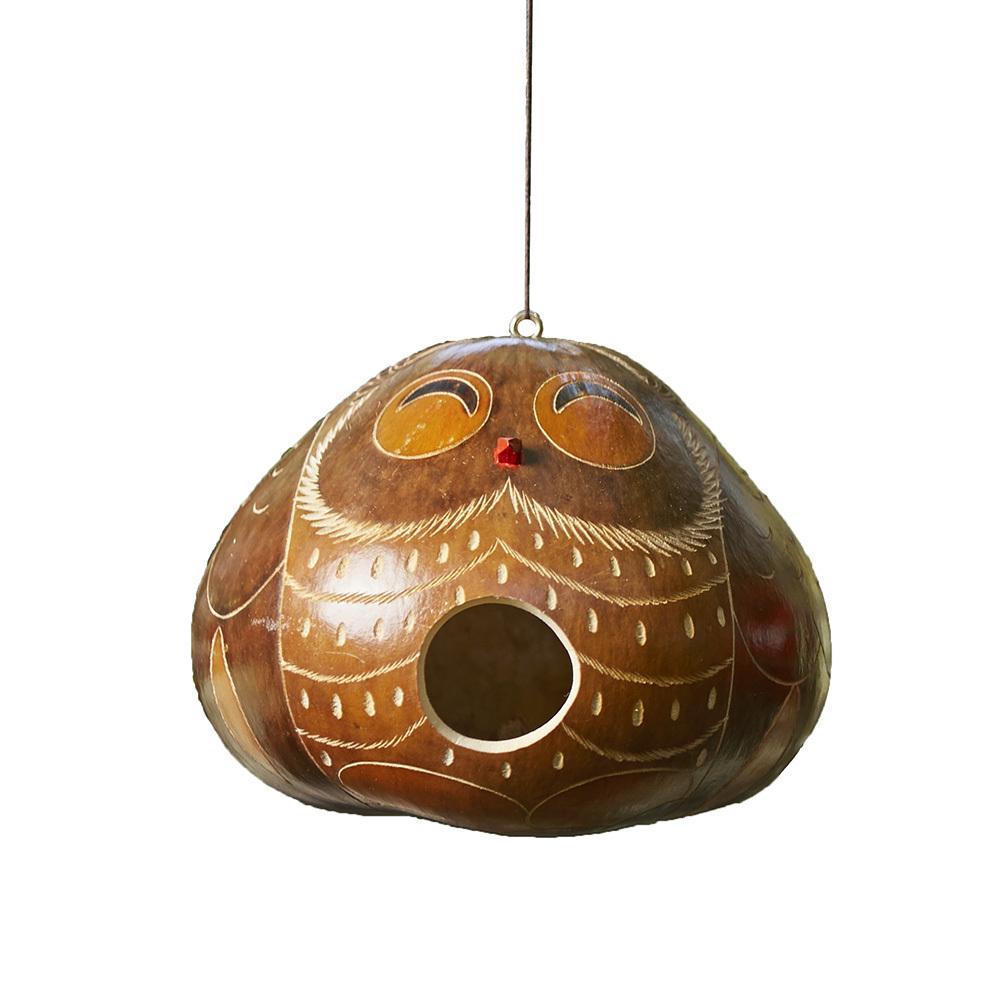 Owl Gourd Birdhouse