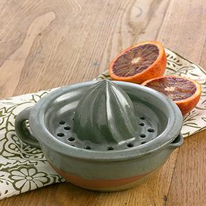 Landscape Series Citrus Juicer