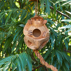 Coconut Monkey Birdhouse