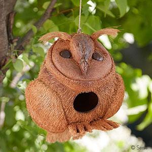 Owl Coconut Birdhouse
