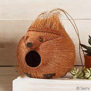 Hedgehog Coconut Birdhouse