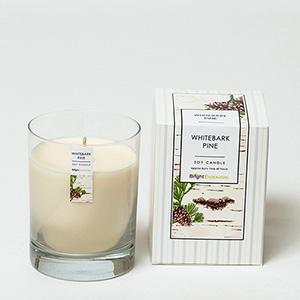 Whitebark Pine Candle