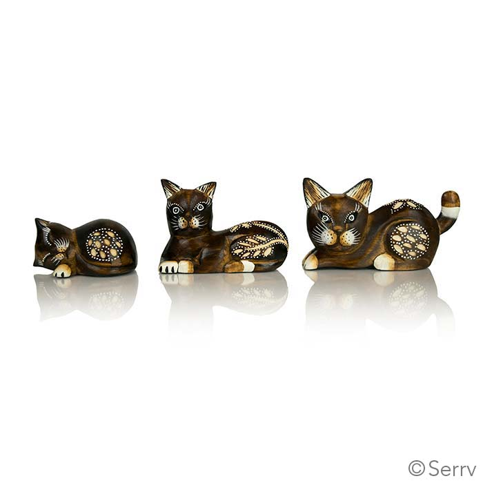 Set of 3 Albizia Kittens