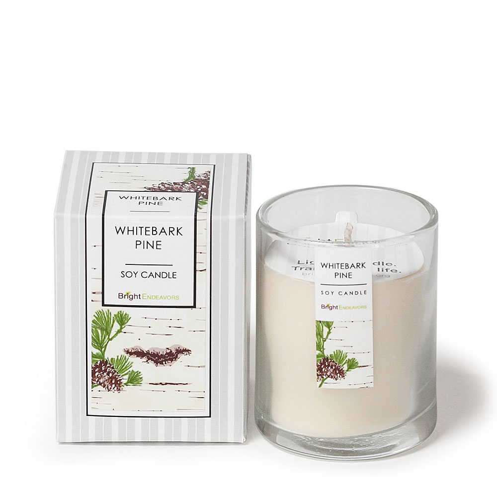 Whitebark Pine Candles