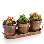 Hammered Ironworks Herb Planter