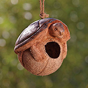 Turtle Coconut Birdhouse