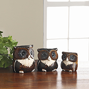 Carved Albizia Owls Set