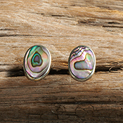 Abalone Shell Post Earrings