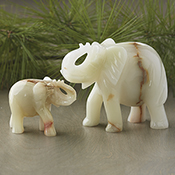 Onyx Elephant Parent