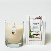 Whitebark Pine Candle