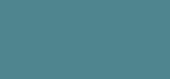 Serrv International