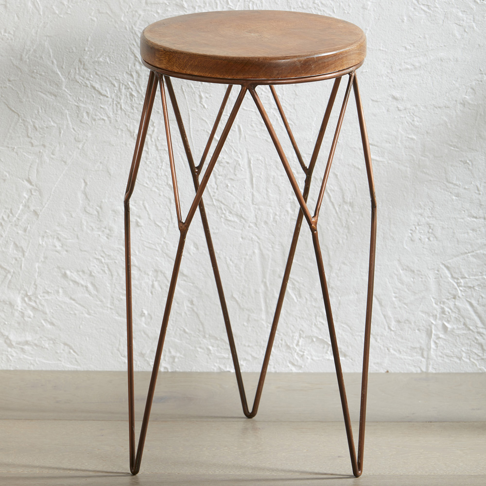 Wire Plant Stand Set with Free Wood Top