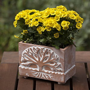 Tree Of Life Planter