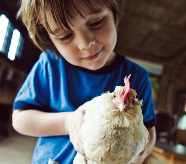 Gift of Shelburne Farms Annual Membership
