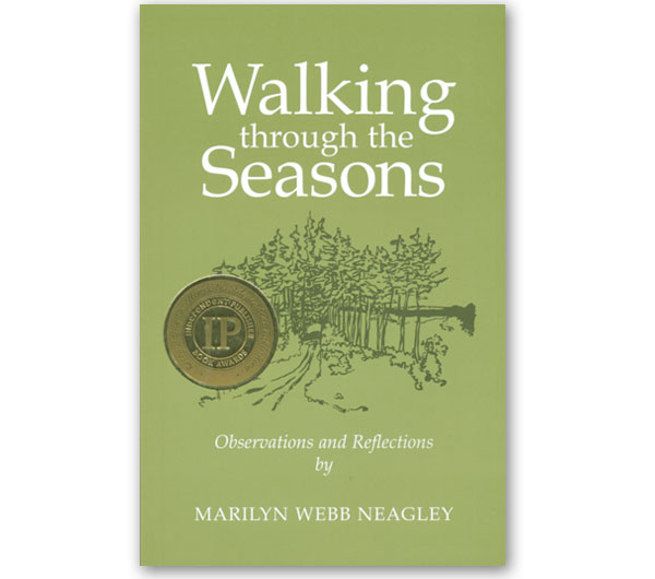 Walking through the Seasons