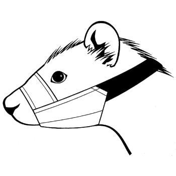 Muzzle,Nylon ferret muzzle