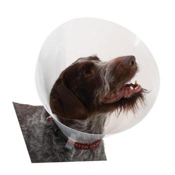 Collar,Buster Dog collar, 10 pack, #25