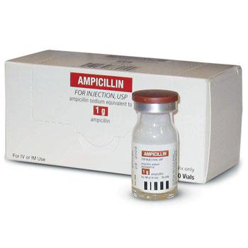 RX AMPICILLIN 1GM INJ, PACK OF 10