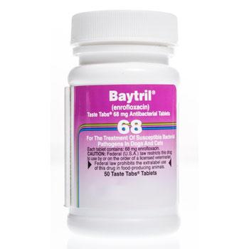 RXV BAYTRIL 68MG, 50 TASTE TABS
