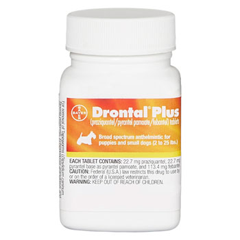 RXV DRONTAL + FOR SMALL DOGS, 22.7MG, 50TABS