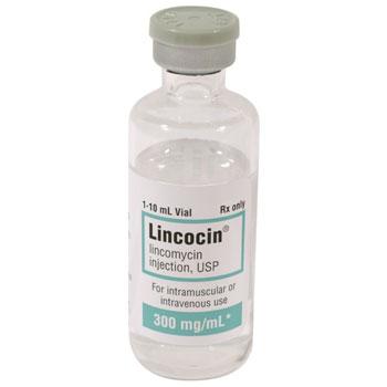 RX LINCOCIN INJ, 300 MG/ML, 10 ML