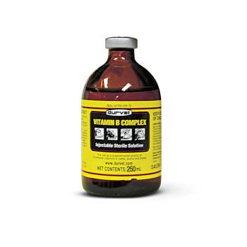 RXV VITAMIN B COMPLEX 250ML VET LABEL