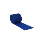 "CAST TAPE,FIBERGLASS,DELTA-LITE PLUS,2""X4YDS,DEEP BLUE,10/BX"