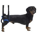 Jorvet Walkabout Animal Harness, X-Small