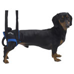 Jorvet Walkabout Animal Harness, Small