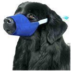 MUZZLES,XXXLARGE COLOR CODED QUICK MUZZLE FOR DOGS